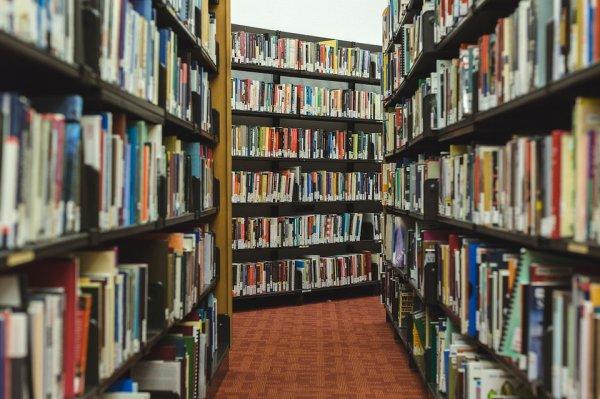 Kütüphane istatistikleri açıklandı