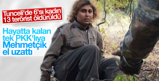 Tunceli'de 6'sı kadın 13 terörist öldürüldü