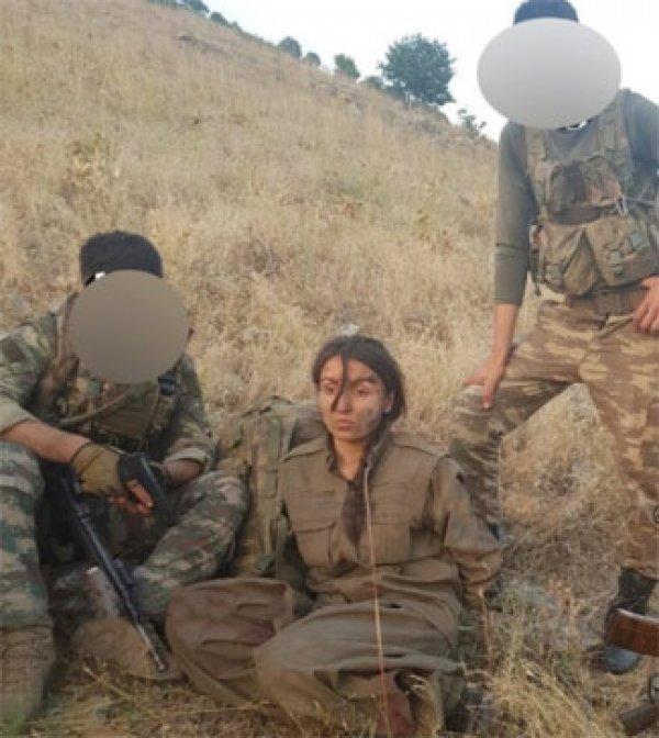 Bitlis şehidinin intikamı alındı