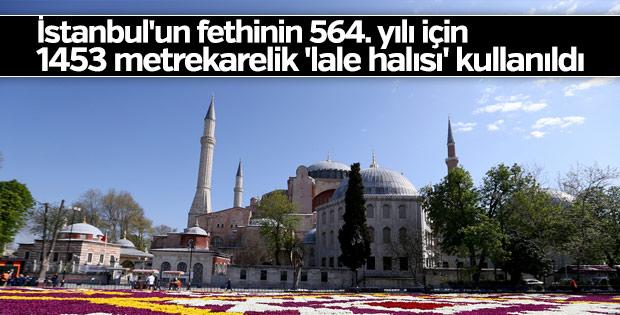 Sultanahmet'te 1453 metrekarelik 'lale halısı' hazırlandı