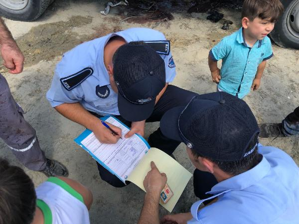 Sultangazi'de zabıtadan kaçak kesim denetimi