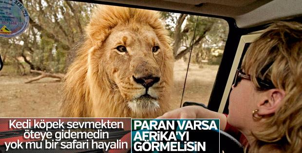 Afrika'da safari için en çılgın rotalar