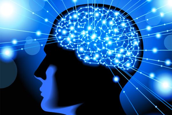 Beyindeki elektrik bağlantılarının haritası çıkarıldı