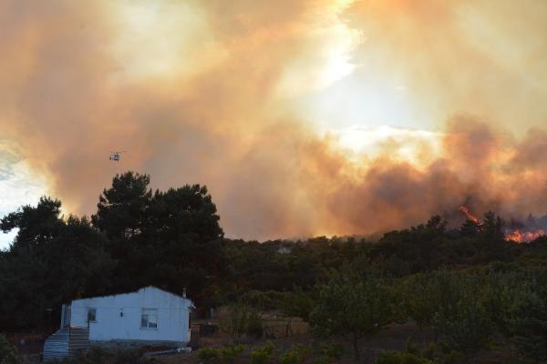 Çanakkale'de orman yangını: 2 saatte kontrol edildi