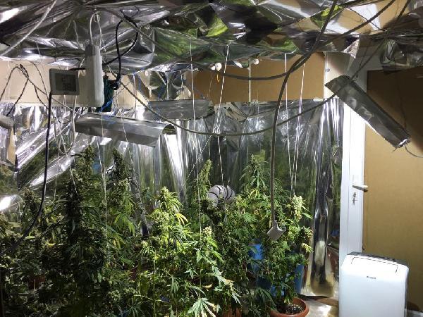 Mersin'de bir eve uyuşturucu baskını
