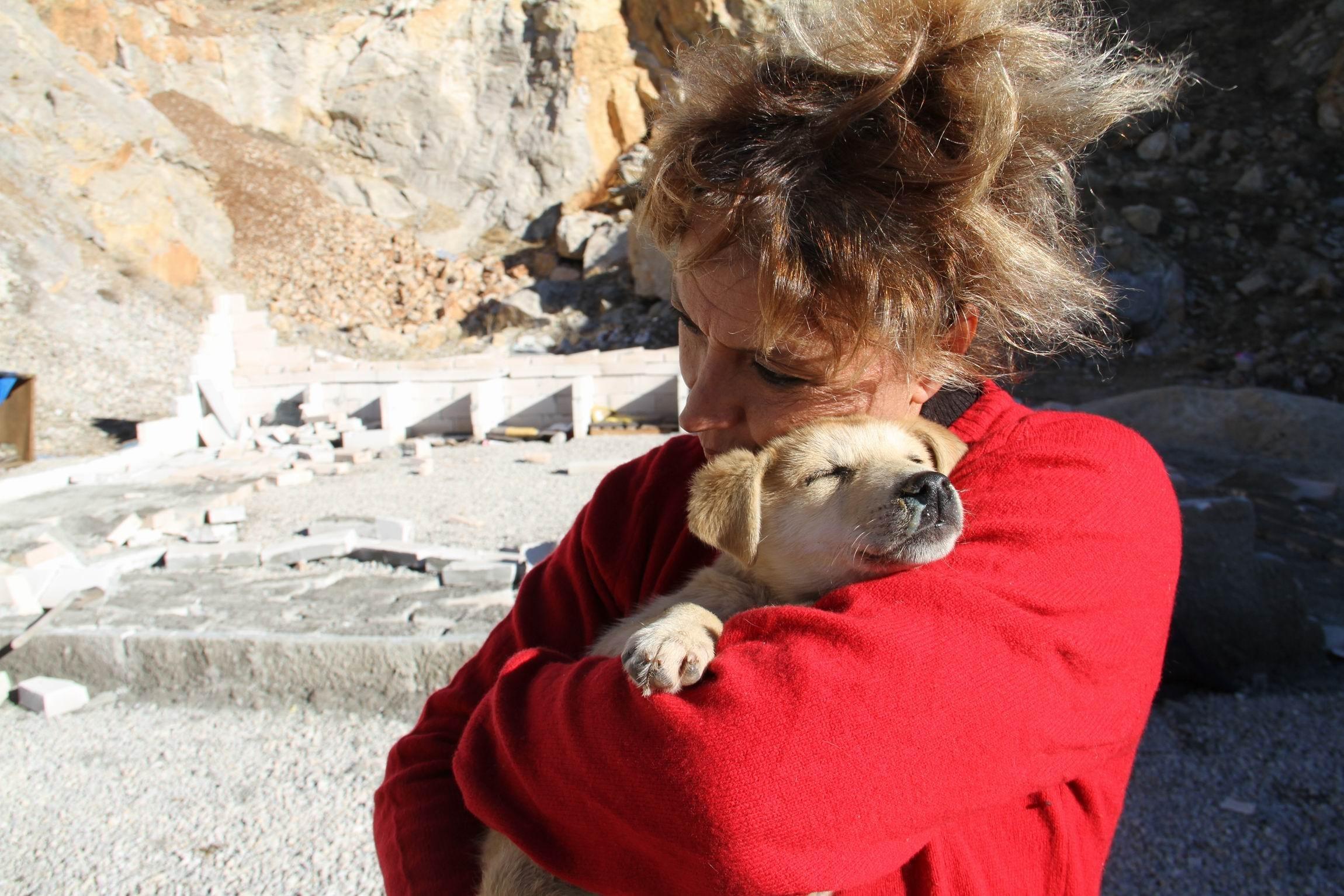 Ağlayan hayvanseveri patileriyle teselli etti...
