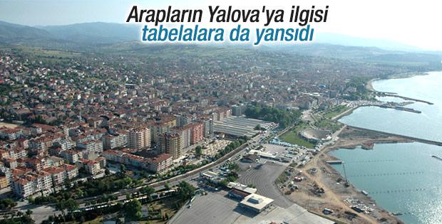 Yalova'da emlakçılar Arapça ilan asmaya başladı