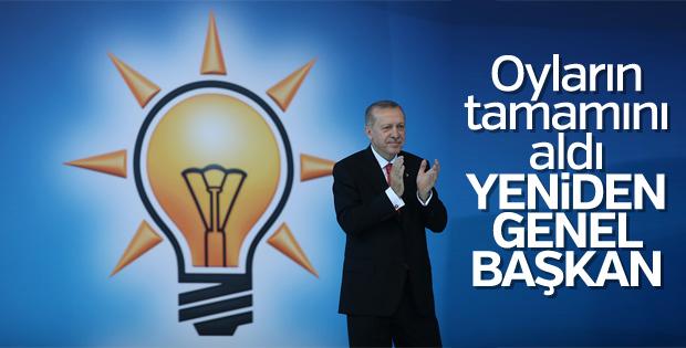 Erdoğan, bir kez daha AK Parti Genel Başkanı seçildi