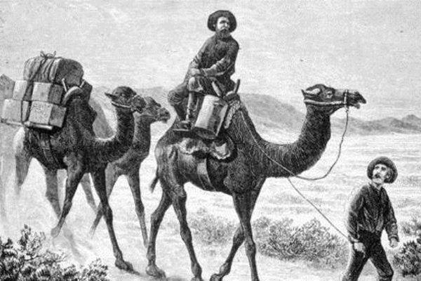 Deveci Hacı Ali'nin Amerika'yla ticareti