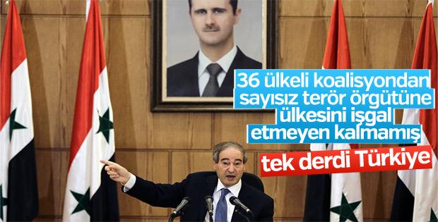 Esad yönetimi, Zeytin Dalı Harekatı'ndan rahatsız