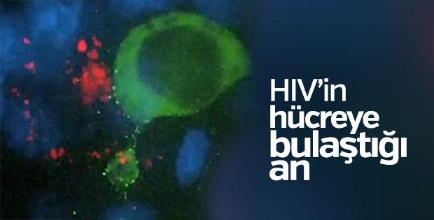 HIV'in hücrelere dağılışı ilk kez görüntülendi