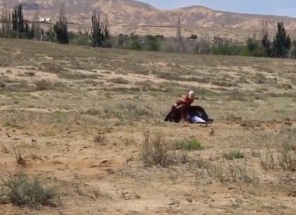 Kırgızistan'da küçük çocuk dev kartala yem oluyordu