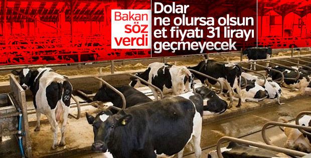 Bakan Fakıbaba canlı yayında ucuz et sözü verdi