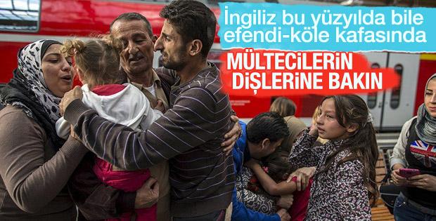 İngiliz vekilden mültecilerin dişine bakalım önerisi