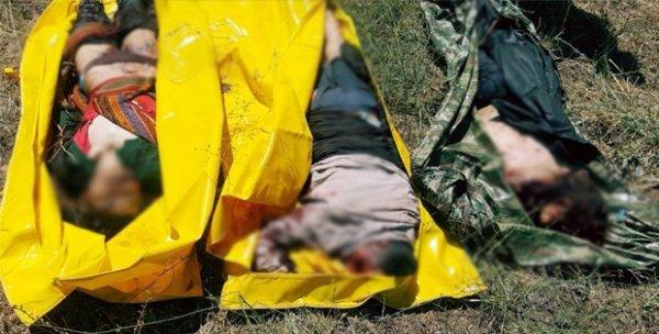 Bingöl'de çatışma: 3 PKK'lı öldürüldü