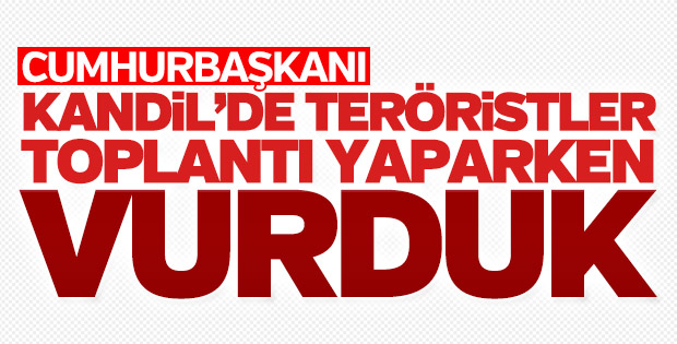 Cumhurbaşkanı: Kandil'de toplantı varken vurduk