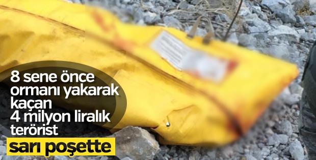 Tunceli'de kırmızı listedeki terörist öldürüldü