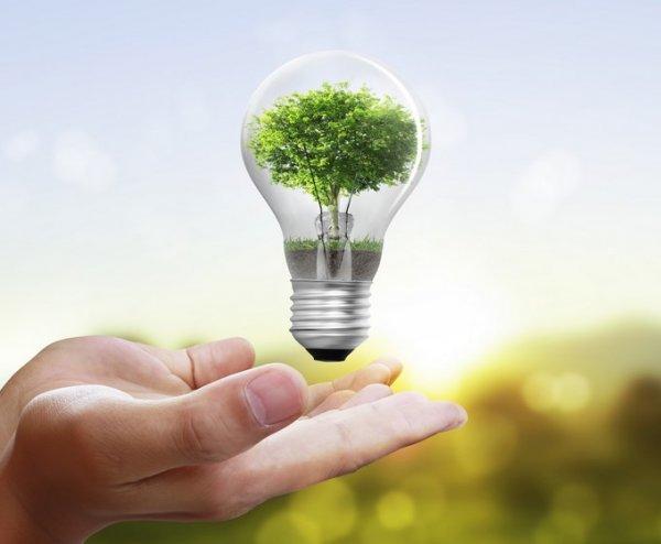 Kamuda maliyetler 'enerji tasarrufuyla' karşılanacak