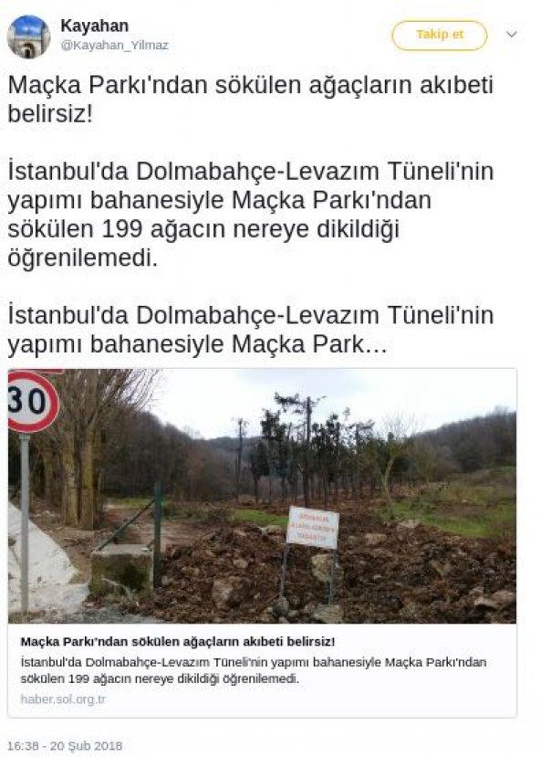 Maçka Parkı'nda ağaç taşıma işlemleri sonlandırıldı