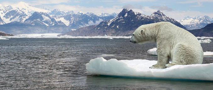 Resultado de imagen de Greenhouse gases