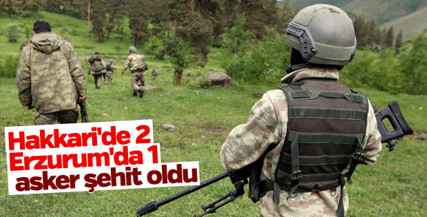 Erzurum ve Hakkari'de terör operasyonu