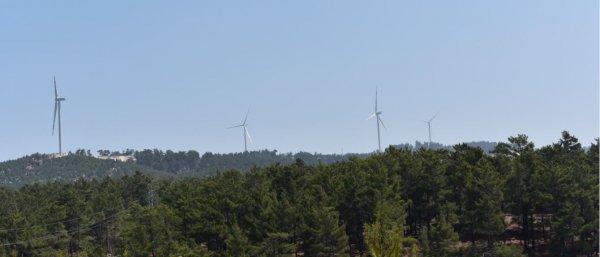 JCR, Sur Yapı ve Sur Enerji'nin kredi notunu yükseltti