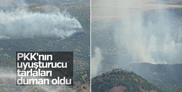 Diyarbakır'da terör örgütü PKK'ya darbe üstüne darbe