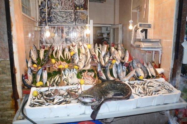 Yakalanan 1,5 metre uzunluğundaki balık şaşırttı