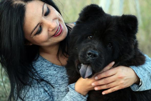 Ölmek üzereyken bulunan Çin aslanı, hayata tutundu