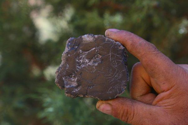 Köylülerin yıllardır yaktığı madde kehribar çıktı