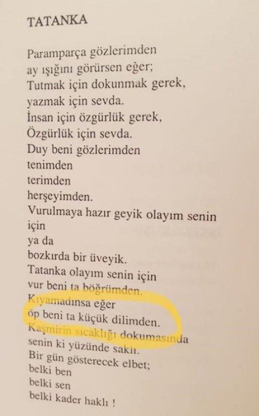 Cumhurbaşkanı, İnce'nin şiir kitabından bahsetti