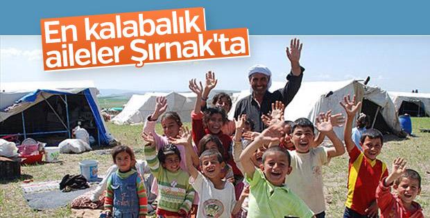En kalabalık aileler Şırnak'ta