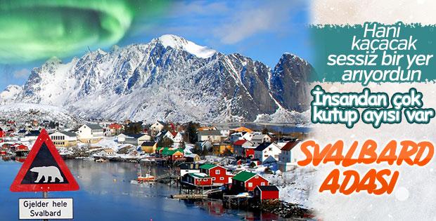 Burada yaşlanmazsınız: Svalbard Adası