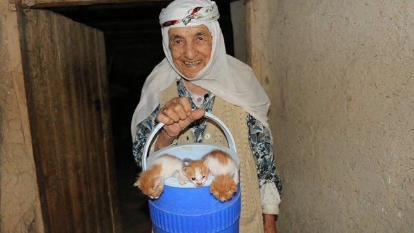 Anneleri ölen yavru kedilere 96 yaşında nine sahip çıktı