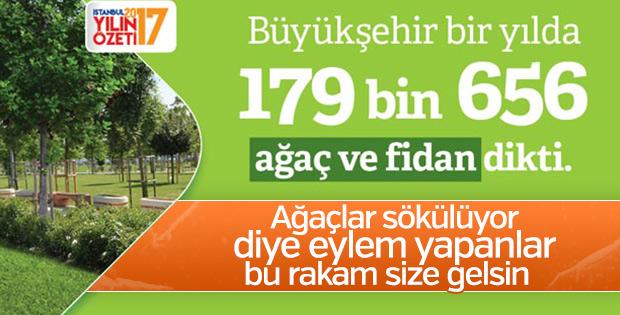 İstanbul ağaca, İstanbullular oksijene doyacak