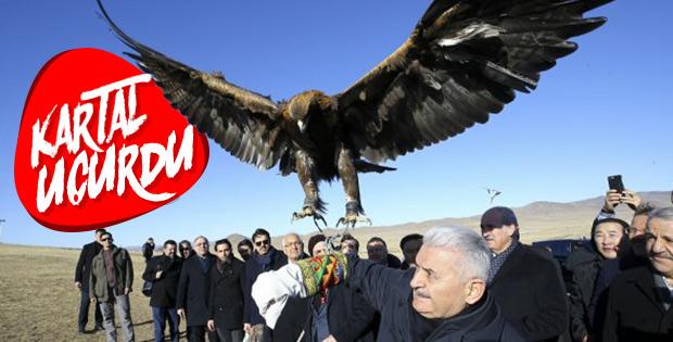 Başbakan Yıldırım Moğolistan'da koluna kartal aldı