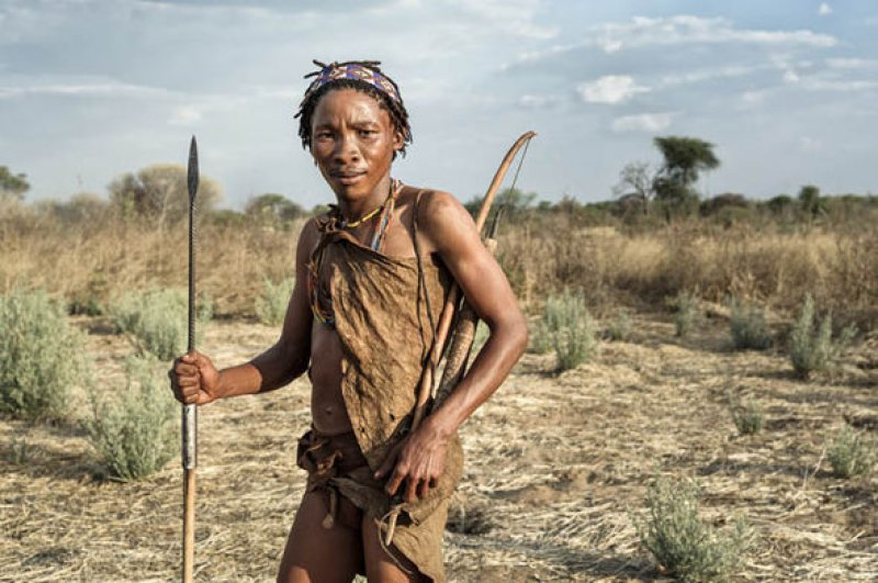 bushmen of the kalahari desert