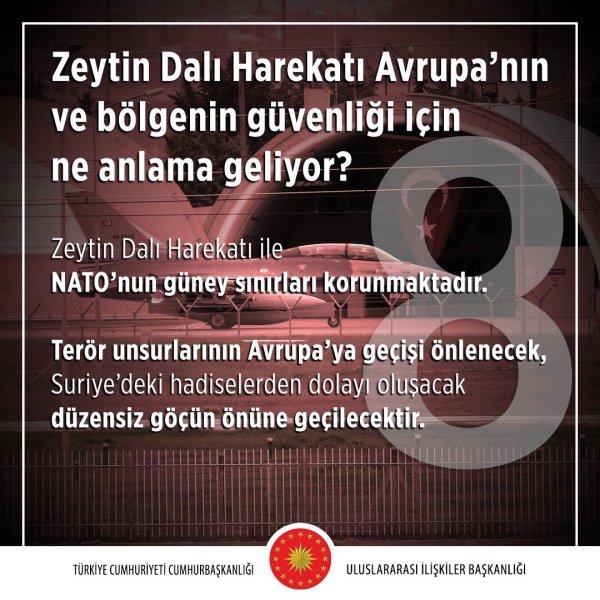 Zeytin Dalı Harekâtı Avrupa'nın ve bölgenin güvenliği için ne anlama geliyor