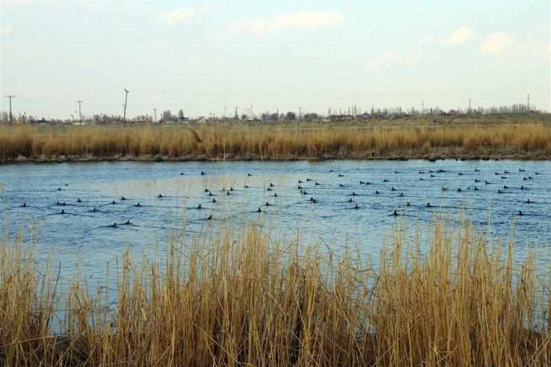 Her mevsim ayrı güzel: Kızıldağ Milli Parkı 80