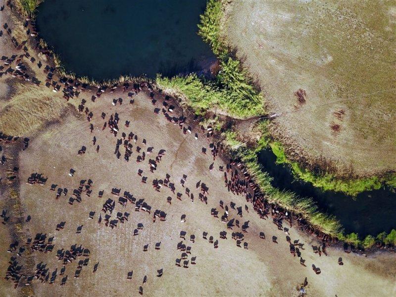 Her mevsim ayrı güzel: Kızıldağ Milli Parkı 51