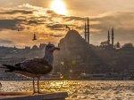 Genç yazarlar şiir ve hikayeleriyle İstanbul'u anlatacak