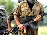 Terör örgütü PKK sivilleri alıkoymaya devam ediyor