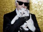 Moda ikonu tüm mirasını kedisine bıraktı