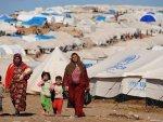Tunus insani şartlardan yoksun göçmen merkezini kapatıyor