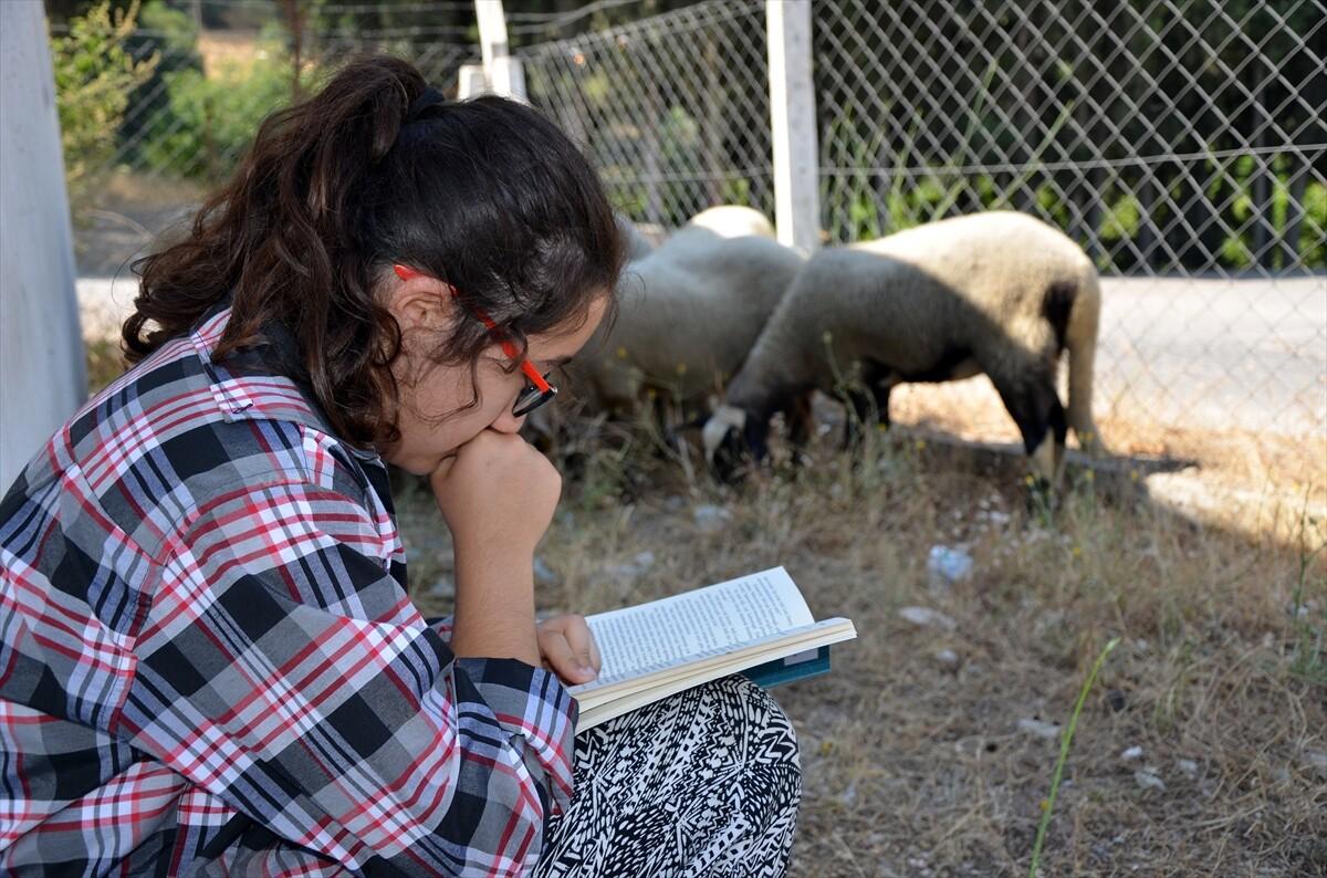 Aydınlı 'Kitap kurdu' Suzan'ın okuma aşkı