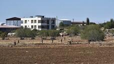 Fıstık bahçesinde 17 kaçak göçmen yakalandı