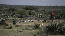 Meksika'da işkence yapılmış 9 ceset bulundu