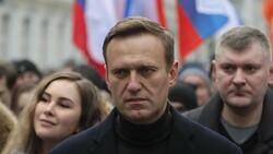 Rus muhalif Navalnıy'a 'gaziye iftiradan' para cezası