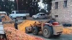 Adana'da çürümüş meyvelerden meyve suyu yapıldığı iddia edildi