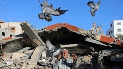 Ebu Huli: Filistinlilerin temel ihtiyaçları için UNRWA harekete geçmeli